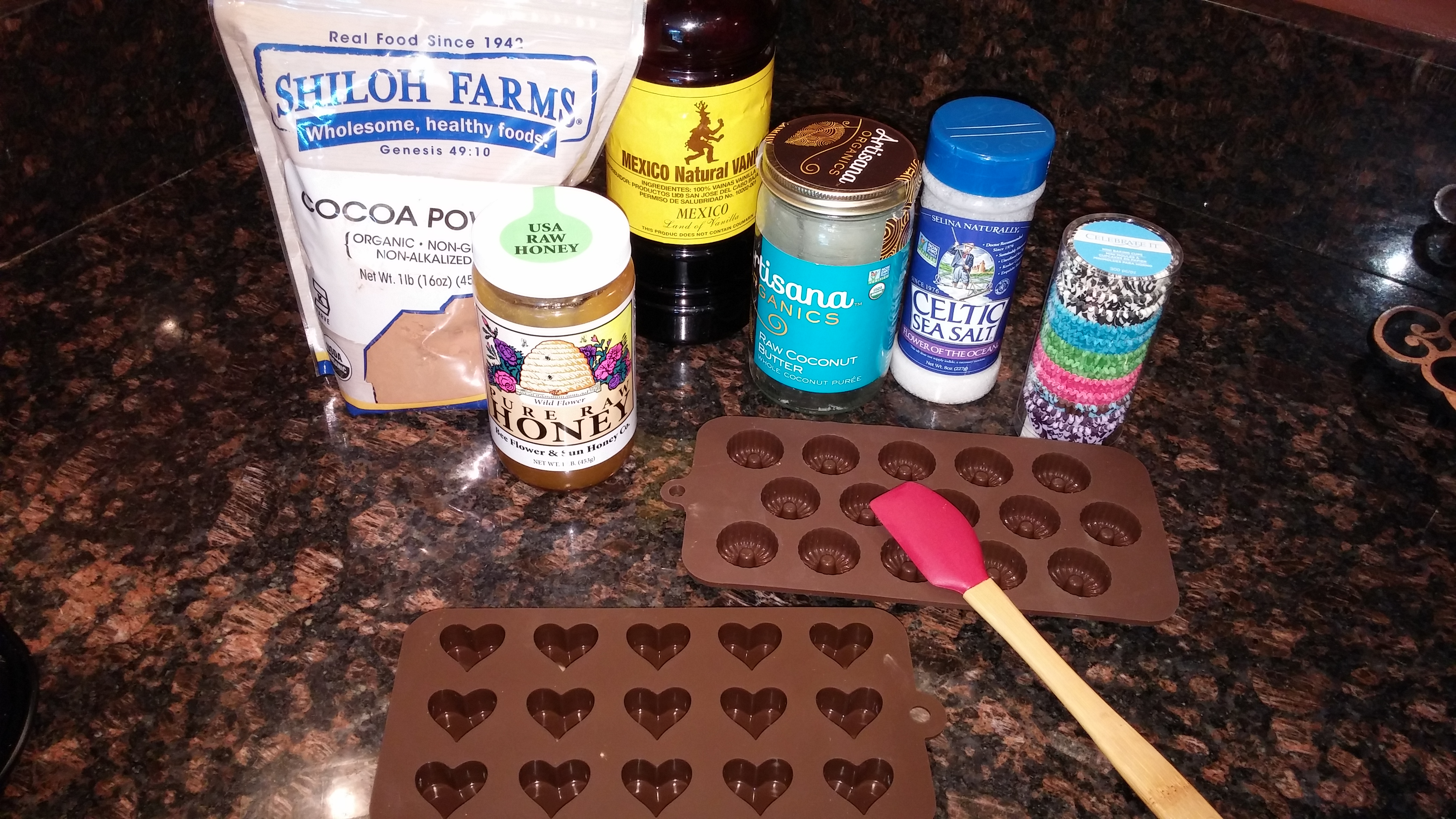 Ingredients for Coconut Cocoa Fudge Bites