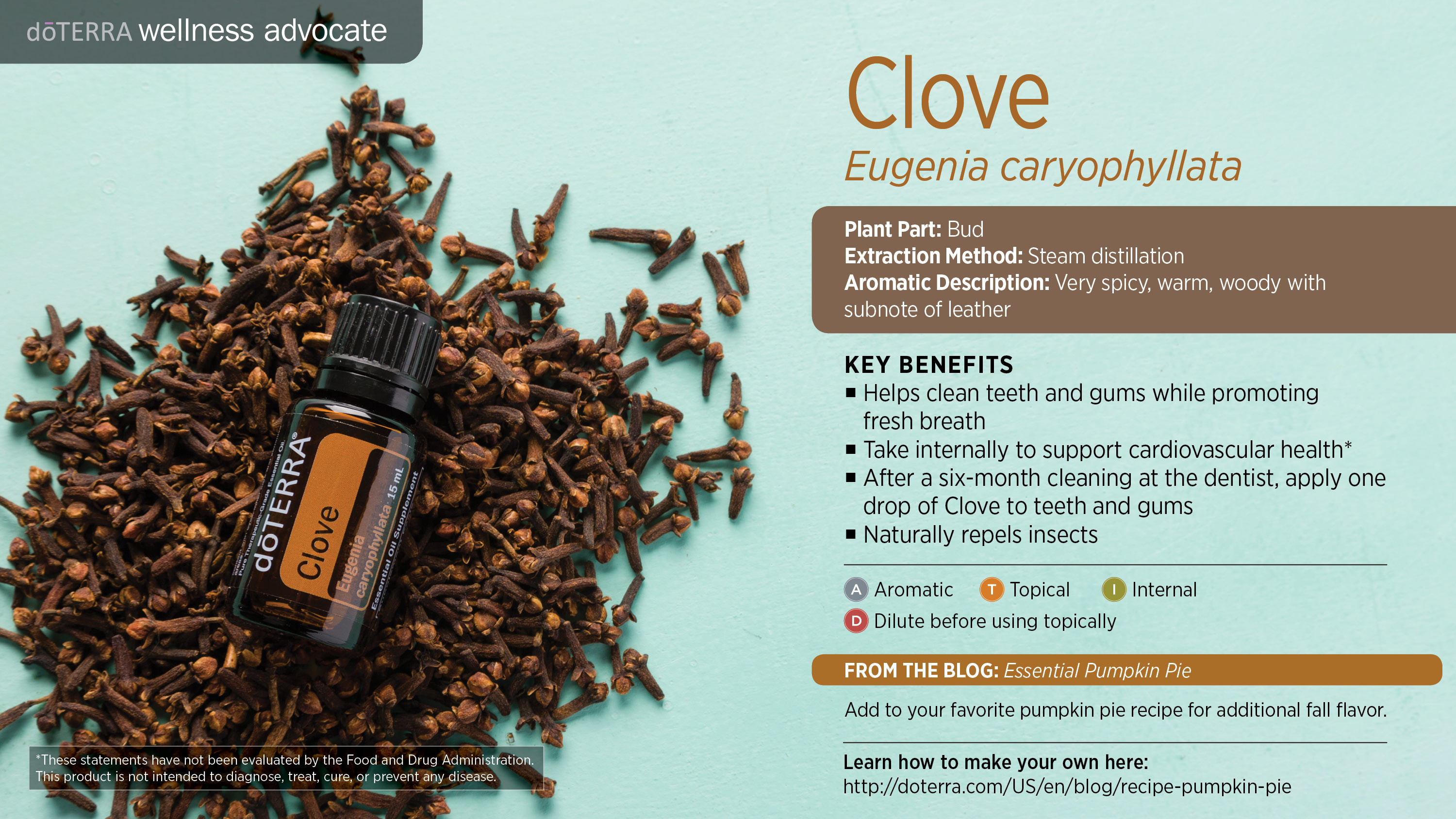 Clove Key Benefits